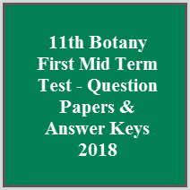 11th Question Papers & Answer Keys