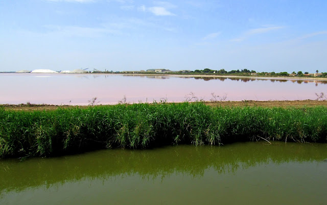 Salinas de Aigües Mortes. Ródano. La Camarga. Sal de la Camarga