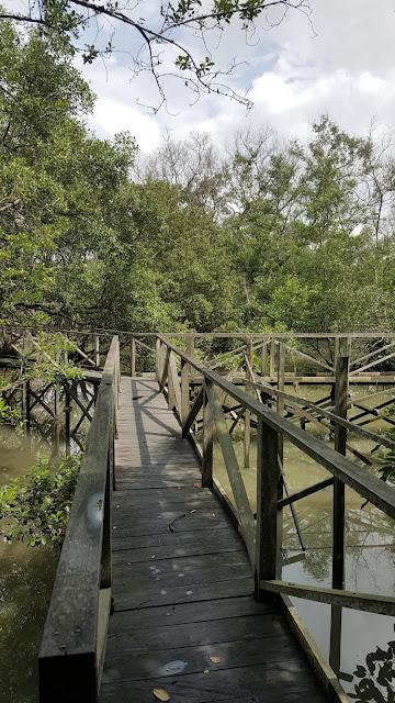 persimpangan jembatan kayu