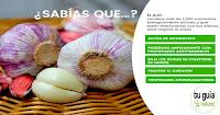 https://steviaven.blogspot.com/2018/02/ajo-milagroso-conozca-propiedades-curativas.html