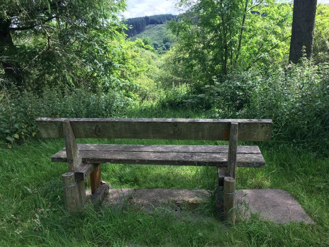 Garwnant-the-wern-walk-bench