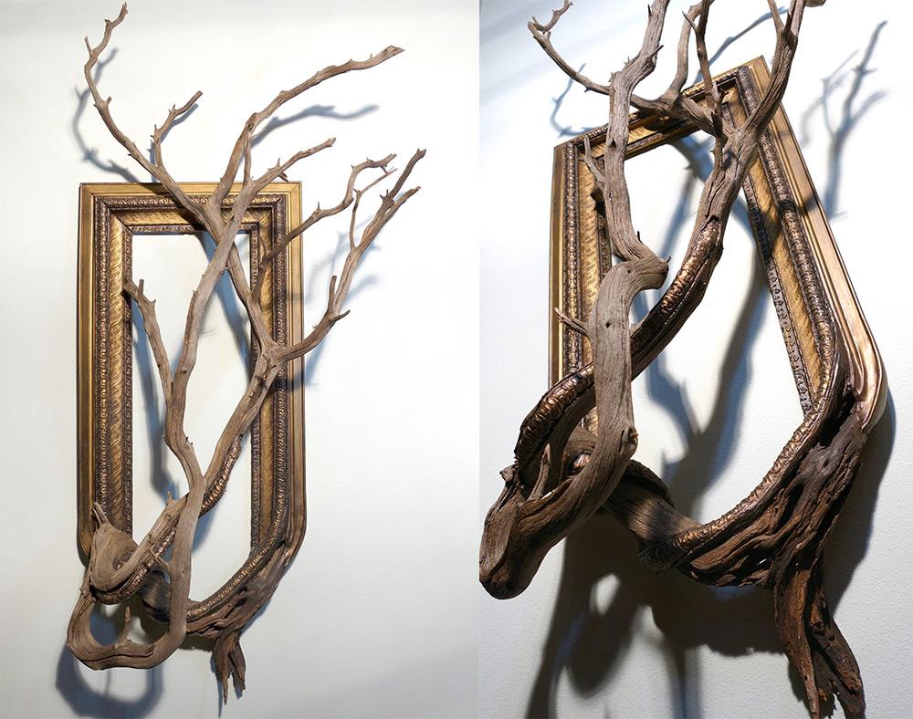 Raíces de árbol se funden con marcos de cuadros por Darryl Cox