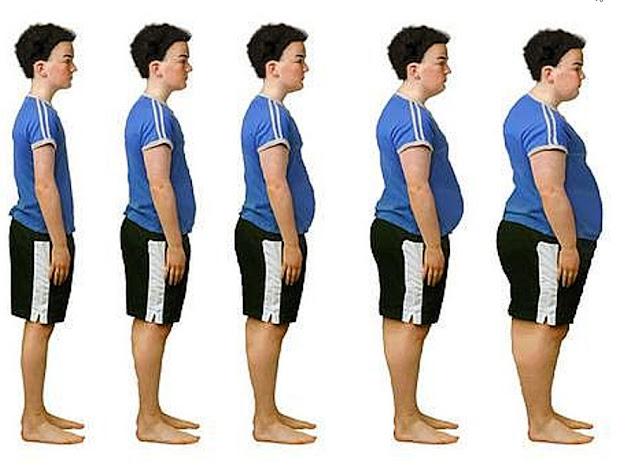 Fat Burner Edmark MRT Combine Fat Burner