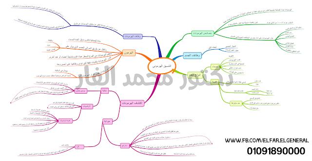 خريطة ذهنية عشقناك يامصر 2017 نصوص اولي اعدادي