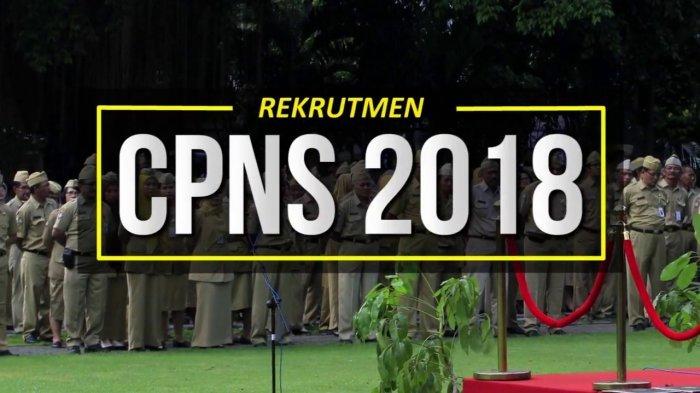 Pendaftaran CPNS 2018 Segera Dibuka, Berikut Daftar Berkas Harus Disiapkan Sekarang