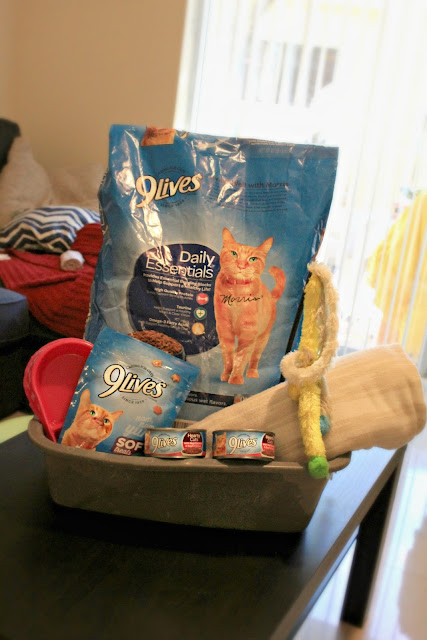 Thinking about donating to your local shelter? They always need food and treats! Here is a basket of 9Lives® goodies that we donated to our local shelter! #CelebratingMorris #ad