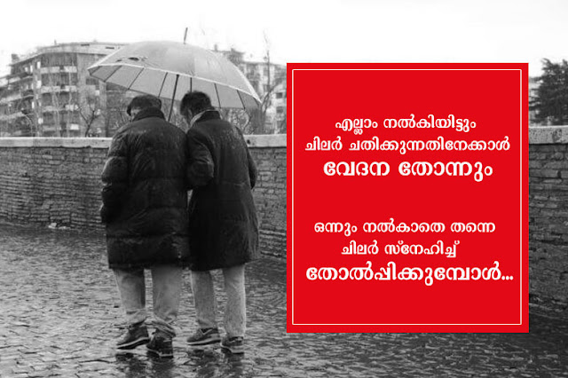 malayalam sad life quotes-kwikk-all someone cheat pain giving love