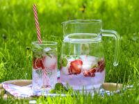 Keuntungan Dasyat Mengembangkan Usaha Minuman Aneka Herbal Dari Alam
