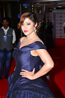 Payal Ghosh aka Harika in Dark Blue Deep Neck Sleeveless Gown at 64th Jio Filmfare Awards South 2017 ~  Exclusive 037.JPG