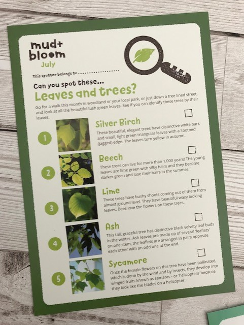 Leave and tree spotting sheet