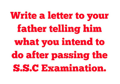 Write a letter to your father telling him what you intend to do after passing the S.S.C Examination.