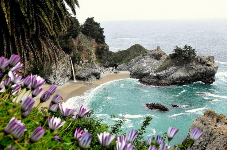 33 Amazing Beaches From Around The World - Julia Pfeiffer Burns State Park, Big Sur, California, USA