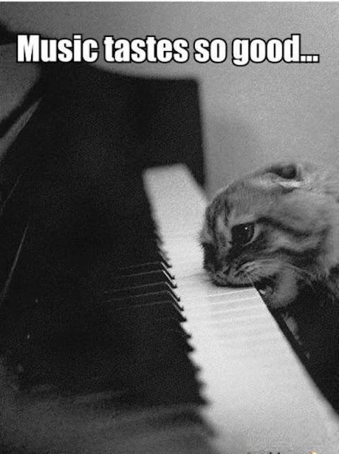 Classical Music Memes 3