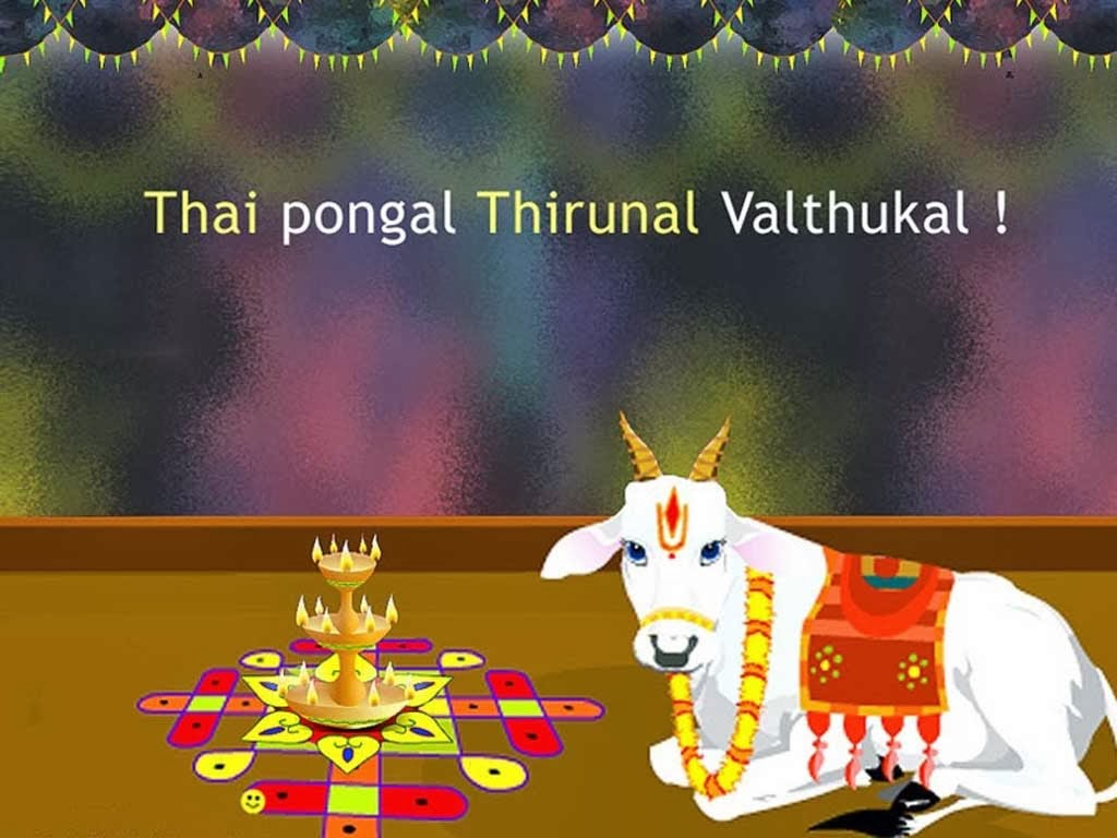89 Pongal Wallpaper Tamil Pongal Different Wallpapers Tamil