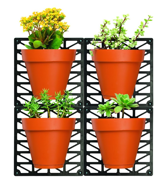 Wall Mounts & 4 Planters-Great for Indoor & Outdoor Walls