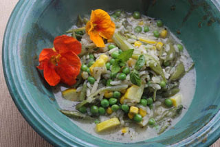 Green (Runner Beans, Peas) and Yellow (Courgette and Sweetcorn) Minestrone
