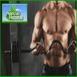 Ervas e vitaminas que podem aumentar a testosterona