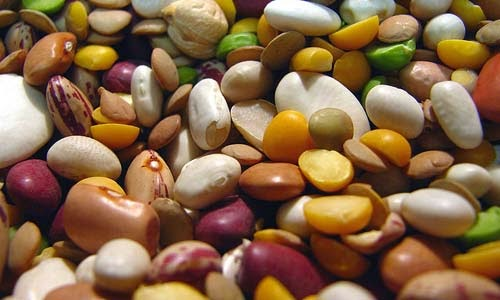 manfaat-kacang-kacangan