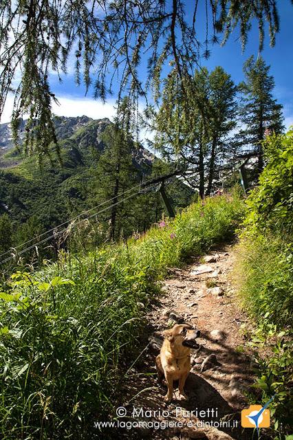 Sentiero per Belvedere