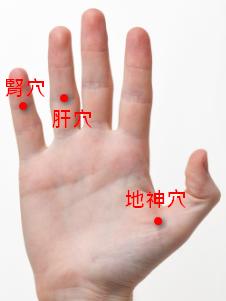 手掌穴道 - 陽痿穴道按摩穴位 - 肝穴、腎穴、地神穴