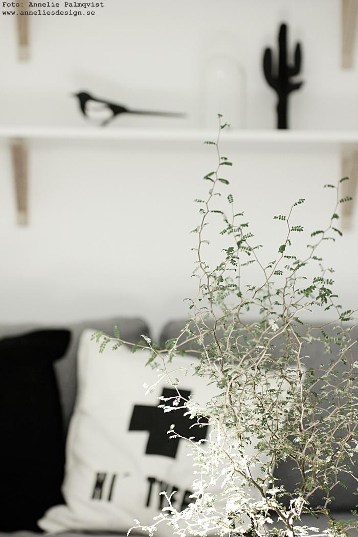 3D kaktus, annelie palmqvist, döden lampa, lampor, taklampa, hylla, dödskalle, tavla, tavlor, poster, posters, konsttryck, print, prints, annelies design, webbutik, webbutiker, nettbutikk, nettbutikker, plakat, plakater, svart och vitt, svartvit, svartvita, fjäder, fjädrar, bläckfisk, bläckfiskar, stol, pinnstol, skata, handsnidad skata, skator, pica pica, inredning, hyllor, hyllan, ikea, natur, trärent, trären, trärena detaljer, skandinaviskt, skandinaviska, nordisk, nordiskt,