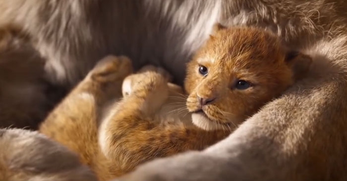 A Fan Compared The Lion King 2019 To The 1994 Disney Animation Side By Side