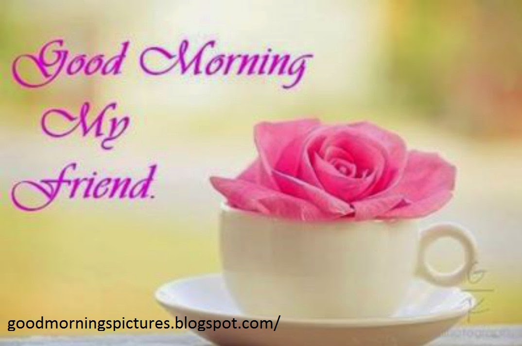 Top 20 Good Morning Beautiful Pictures Free Download