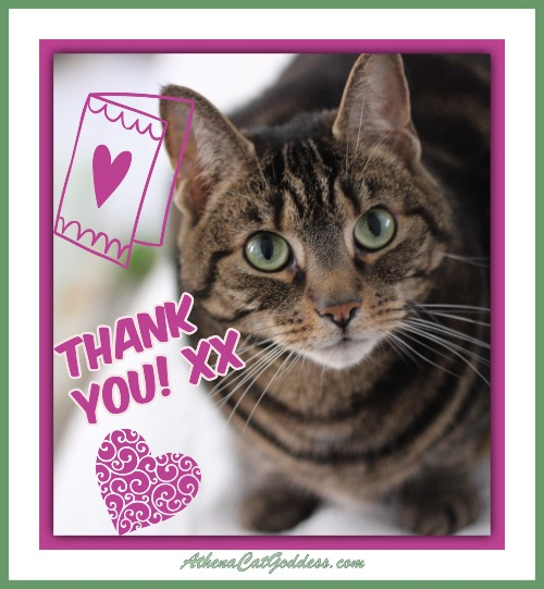 Thank You Card with Cat