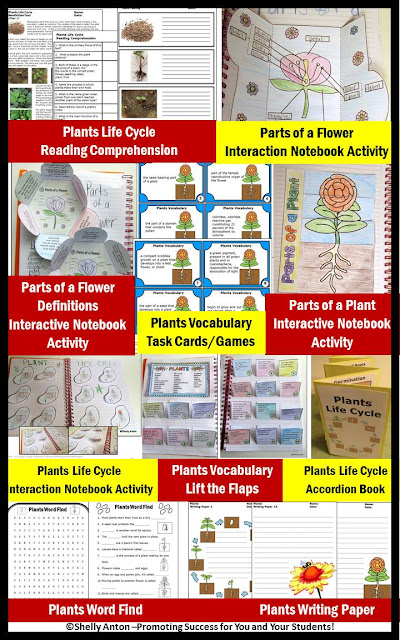 plants bundle of activities crafts craftivity task cards interactive notebooks