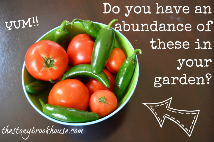 Abundance of tomatoes and jalapenos