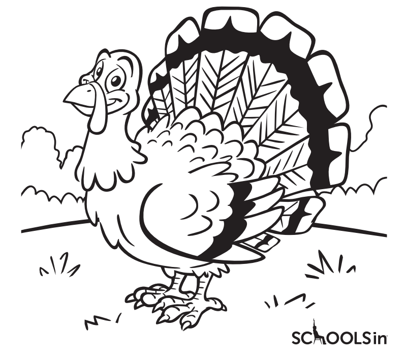 AmpliVox Sponsors SchoolsIn Thanksgiving Turkey Coloring