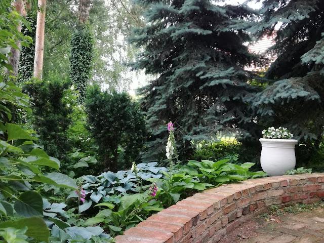 niski murek z cegły rozbiórkowej, ogród w cieniu