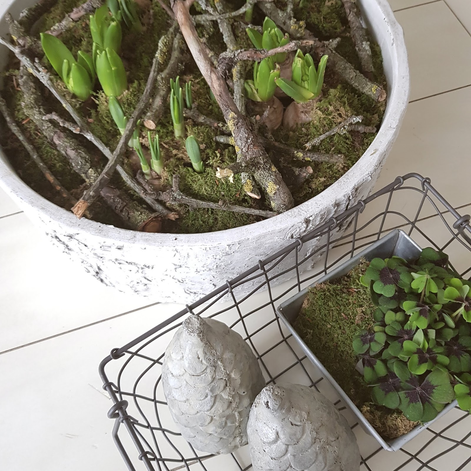 Frühlingsdeko mit Frühlingsblühern Moos und Ästen