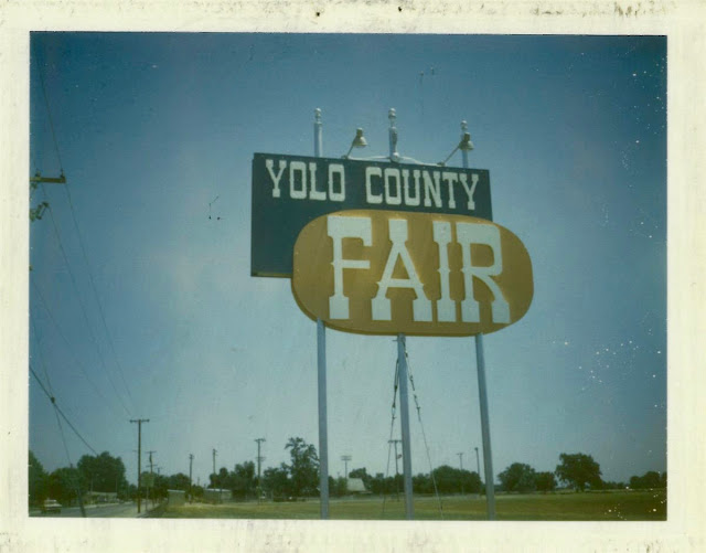 Snapshot of Yolo County Fair billboard 1960-1970. Memento Mori and YOL. Other stories of Trump and Megalomaniacs. marchmatron.com