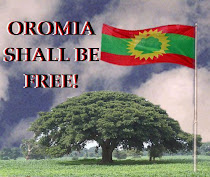Oromo's Right