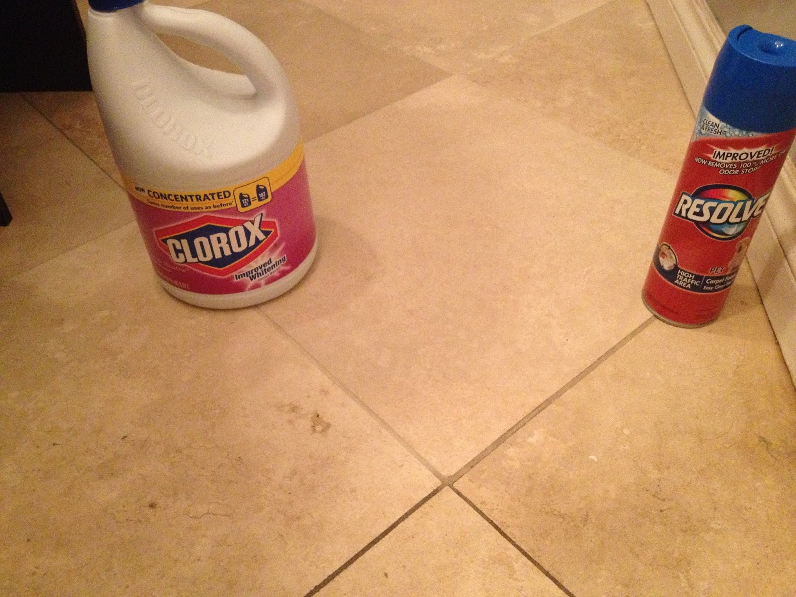 Resolve Carpet Cleaner For Grout Shapeyourminds Com