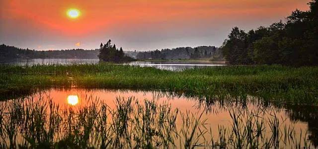 Ekosistem Danau dan Sungai
