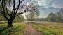 Kumpulan Foto-Foto Pemandangan Alam Yang Bagus Di Jadikan Wallpaper PC/Laptop/Hp