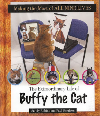 Buffy The Cat