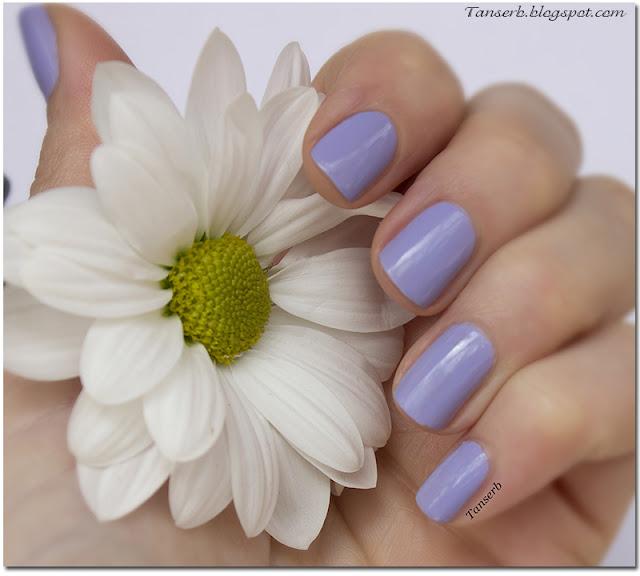 Nogotok Style Color # 13