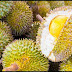 Durian's Health Benefits And Why They Are Called The King Of Fruits