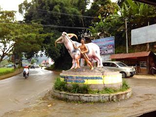 Tedong Bonga Toraja