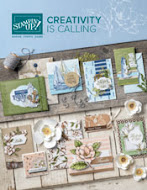 2019/20 stampin up catalogue