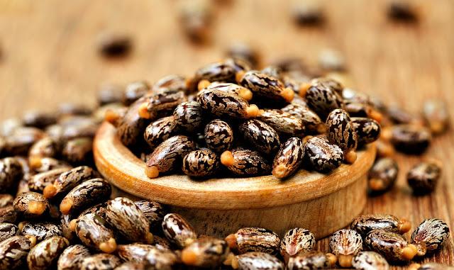 ricinusovo ulje za rast brade