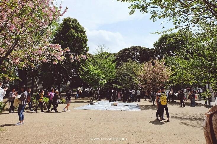 hanami spot in ueno park