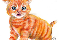 Imagens De Gato Desenho Colorido Coloriage Ideas