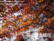 2019日本紅葉預測(11月12日更新)