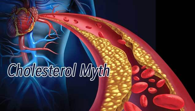 Cholesterol the Hidden Truth