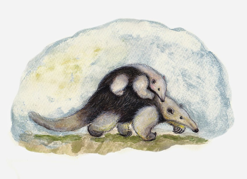 Ameisenbär, Tierkinder, Illustration, anteater, ant bear, children's book illustration, nature, animals, baby