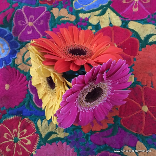 colorful flowers decoration at Four Seasons Resort Punta Mita in Mexico